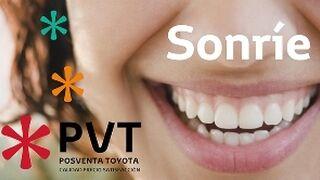 Toyota Canarias, mano de obra gratis para desempleados