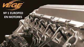 Vege, elegida mejor marca de motores por los rectificadores