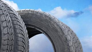 TNU recogió más de 50.000 toneladas de NFU en 2012