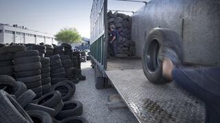 Signus mantendrá los precios Ecovalor también en 2014