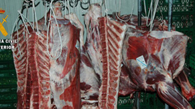 """El Seprona descubre un """"taller-carnicería"""" en Valmojado (Toledo)"""