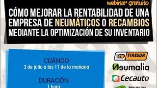 Mejora la rentabilidad de tu empresa de neumáticos o recambios
