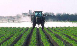 Denuncian a un taller por vender herbicidas