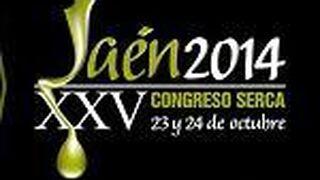 Sigue en directo el XXV Congreso de Serca