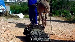 Vege ridiculiza en un vídeo los motores sin garantía y se hace viral