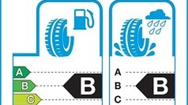 Denuncian falta de control en la etiqueta europea de neumáticos de invierno
