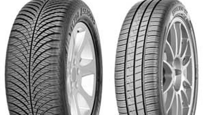 Goodyear EfficentGrip Performance y Vector 4Seasons Gen-2, en el nuevo Scenic