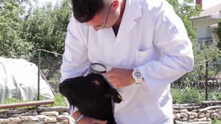 Un taller madrileño promociona su servicio de chapa con un divertido vídeo