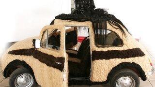 Se vende el coche más peludo del mundo