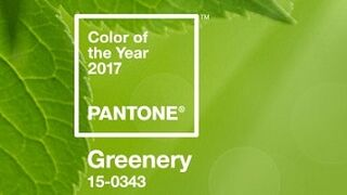 Verde Greenery, el color que será tendencia en 2017
