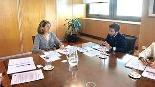 Faconauto pide a Industria un plan de renovación más ambicioso para 2018