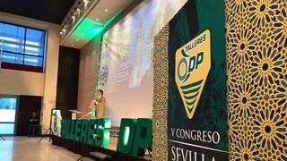 V Congreso de Talleres DP, en imágenes