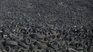Capa Neumáticos y el Seprona se unen contra las irregularidades del sector