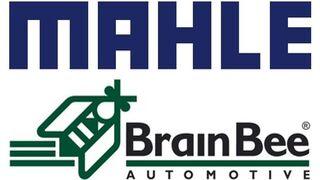 Mahle incrementa hasta el 80% sus acciones de BrainBee