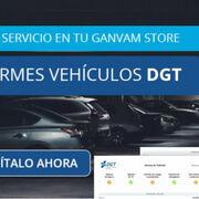 Ganvam ofrece el servicio de envío inmediato del informe de vehículo de la DGT