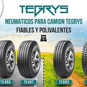 Neumáticos Andrés amplía su catálogo con las cubiertas Tegrys para camión