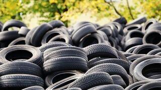 Piden la retirada de neumáticos en un vertedero ilegal en Campos del Río (Murcia)