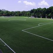 Solodegoma (Grupo Soledad), en los campos de fútbol de América tras la certificación FIFA