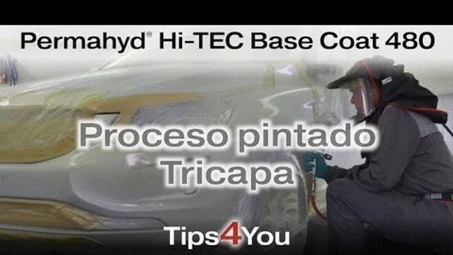 ¿Cuáles son los pasos a seguir en un proceso de reparación tricapa?