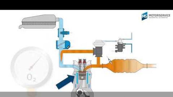 La recirculación de los gases de escape: cómo funciona el EGR y sus componentes