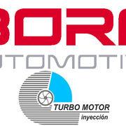 Borg Automotive adquiere Turbo Motor Inyección