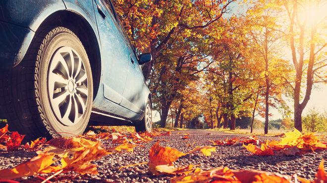 Los puntos vitales del coche a revisar para garantizar su rendimiento en otoño