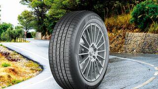Dunlop presenta su neumático para todo tiempo, el Sport All Season