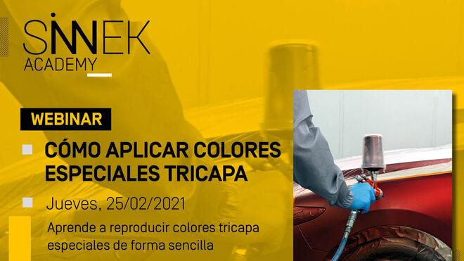 Webinar gratuito de Sinnek sobre aplicación y reproducción de colores tricapa