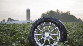 Goodyear afianza su política de abastecimiento sostenible de soja para crear neumáticos