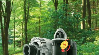 Bosch eXchange colaborará con la reforestación de Llanes (Asturias)